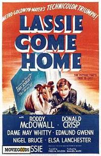 Lassie, Come Home - 43 x 62 Movie Poster - Bus Shelter Style A