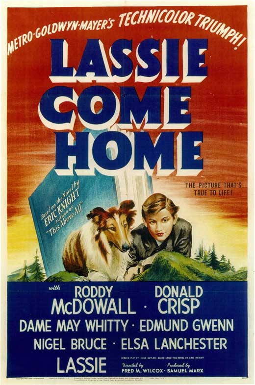 Lassie Come Home Movie Posters From Movie Poster Shop