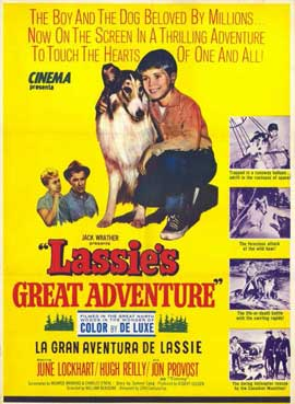 Lassie's Great Adventure - 11 x 17 Movie Poster - Style A