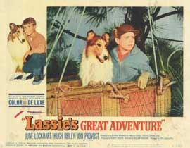 Lassie's Great Adventure - 11 x 14 Movie Poster - Style G