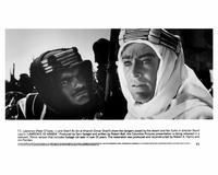 Lawrence of Arabia - 8 x 10 B&W Photo #6