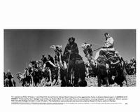Lawrence of Arabia - 8 x 10 B&W Photo #8