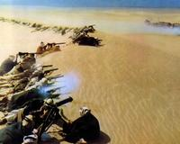 Lawrence of Arabia - 8 x 10 Color Photo #3