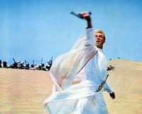 Lawrence of Arabia - 8 x 10 Color Photo #4