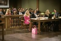 Legally Blonde - 8 x 10 Color Photo #5