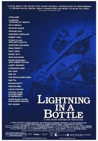 Lightning in a Bottle - 43 x 62 Movie Poster - Bus Shelter Style A