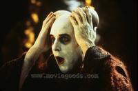 Little Nicky - 8 x 10 Color Photo #7