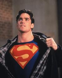 Lois and Clark: The New Adventures of Superman - 8 x 10 Color Photo #32