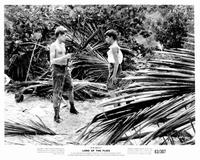 Lord of the Flies - 8 x 10 B&W Photo #1