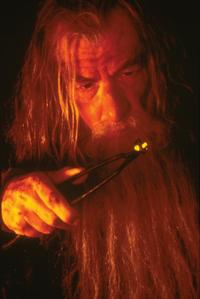 Lord of the Rings Trilogy - 8 x 10 Color Photo #8