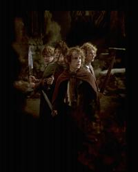 Lord of the Rings 1: The Fellowship of the Ring - 8 x 10 Color Photo #41