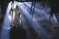 Lord of the Rings: The Two Towers - 8 x 10 Color Photo #20