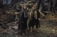 Lord of the Rings: The Two Towers - 8 x 10 Color Photo #22