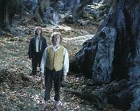 Lord of the Rings: The Two Towers - 8 x 10 Color Photo #23