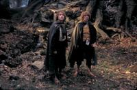 Lord of the Rings: The Two Towers - 8 x 10 Color Photo #62