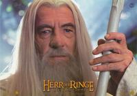 Lord of the Rings: The Two Towers - 8 x 10 Color Photo Foreign #2