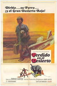 Lost in the Desert - 27 x 40 Movie Poster - Spanish Style A