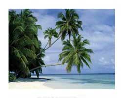 Maldives Beach - Family Poster - 22 x 34 - Style D