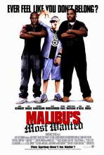 Malibus Most Wanted - 27 x 40 Movie Poster - Style A