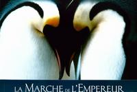 March of the Penguins - 11 x 14 Poster French Style C