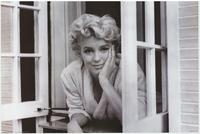 Marilyn Monroe - People Poster - 16 x 20 - Style B