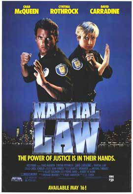 Martial Law II: Undercover - 27 x 40 Movie Poster - Style B