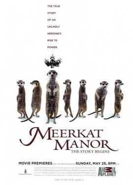Meerkat Manor (TV) - 11 x 17 TV Poster - Style A