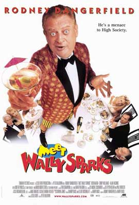 Meet Wally Sparks - 27 x 40 Movie Poster - Style A