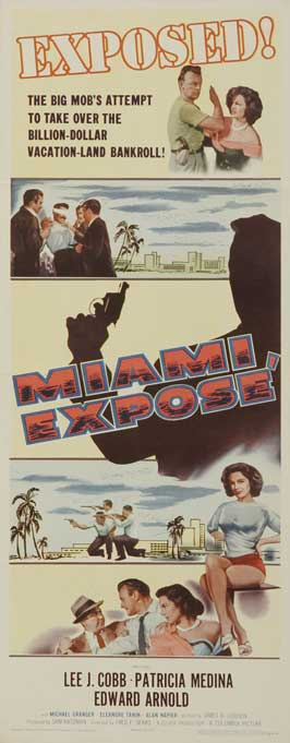 Miami Expose - 14 x 36 Movie Poster - Insert Style A