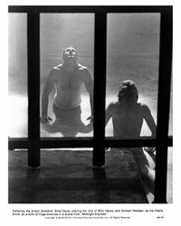 Midnight Express - 8 x 10 B&W Photo #15