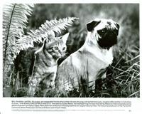Milo & Otis - 8 x 10 B&W Photo #1