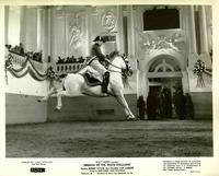The Miracle of the White Stallions - 8 x 10 B&W Photo #8