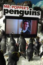 Mr. Popper's Penguins - 27 x 40 Movie Poster - Style B