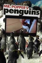 Mr. Popper's Penguins - 27 x 40 Movie Poster - Style C