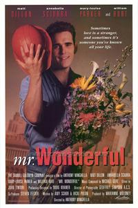 Mr. Wonderful - 43 x 62 Movie Poster - Bus Shelter Style A