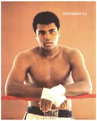 Muhammad Ali - People Poster - 16 x 20 - Style B