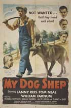 My Dog Shep - 27 x 40 Movie Poster - Style A