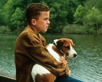 My Dog Skip - 8 x 10 Color Photo #1