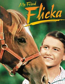 My Friend Flicka - 11 x 17 Movie Poster - Style B