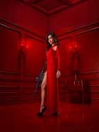 Nikita (TV) - 11 x 17 TV Poster - Style C
