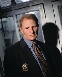 NYPD Blue - 8 x 10 Color Photo #4