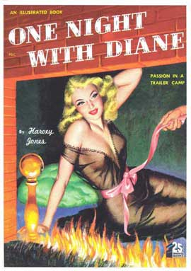 One Night With Diane - 11 x 17 Retro Book Cover Poster