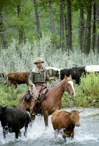 Open Range - 8 x 10 Color Photo #2