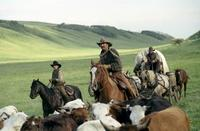 Open Range - 8 x 10 Color Photo #6