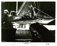 Orca - 8 x 10 B&W Photo #3