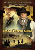 Palo Pinto Gold - 43 x 62 Movie Poster - Bus Shelter Style A