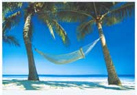 Paradise Beach Hammock - Photography Poster - 24 x 36 - Style A