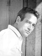 Paul Newman - Paul Newman Posed in Polo Black and White