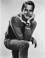 Paul Newman - Paul Newman Posed in Sweater With White Background