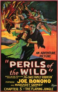 Perils of the Wild - 11 x 17 Movie Poster - Style A